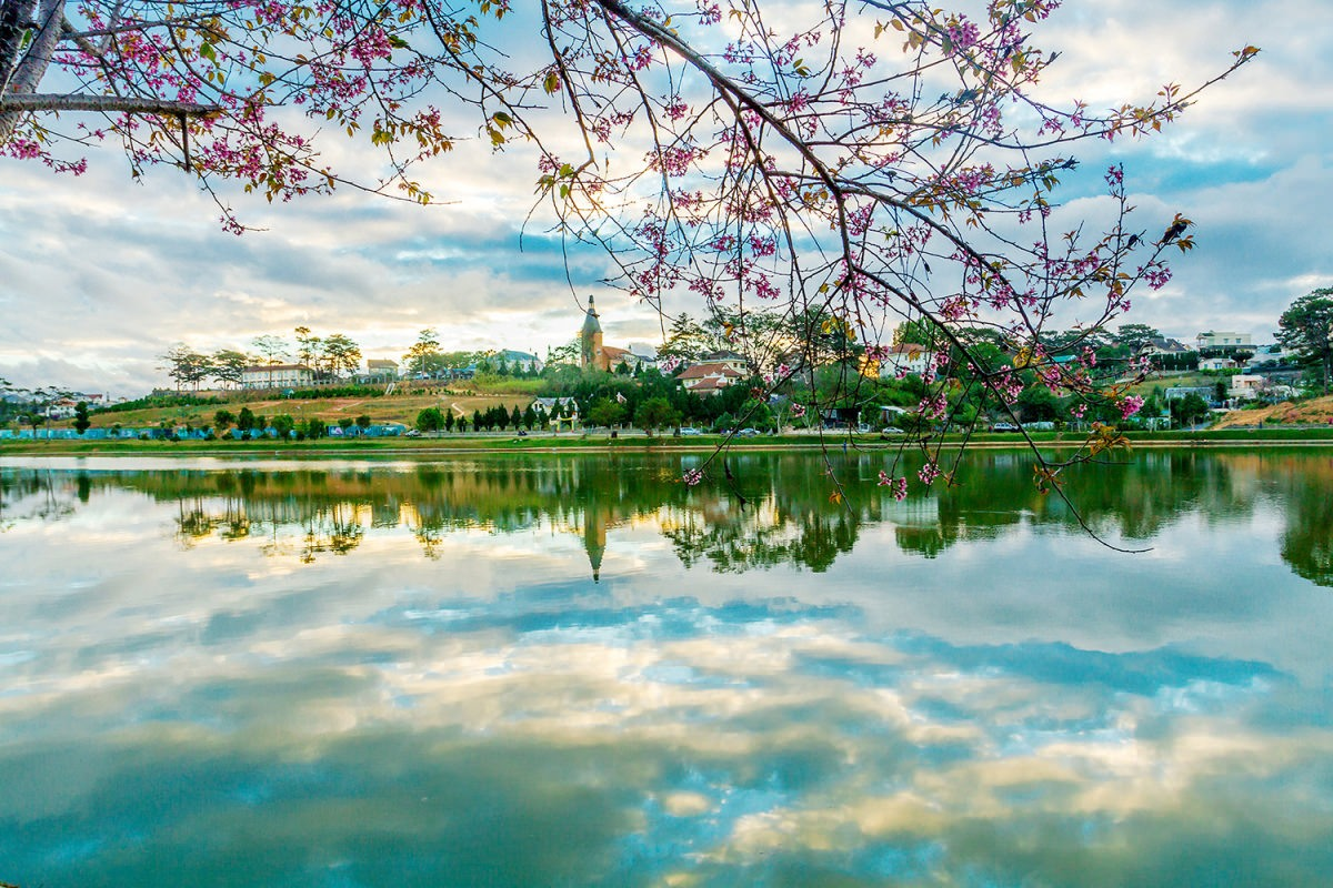달랏 호수 달랏 여행지 달랏 관광지
